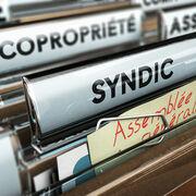 Contrats de syndicsLe Vrai/Faux