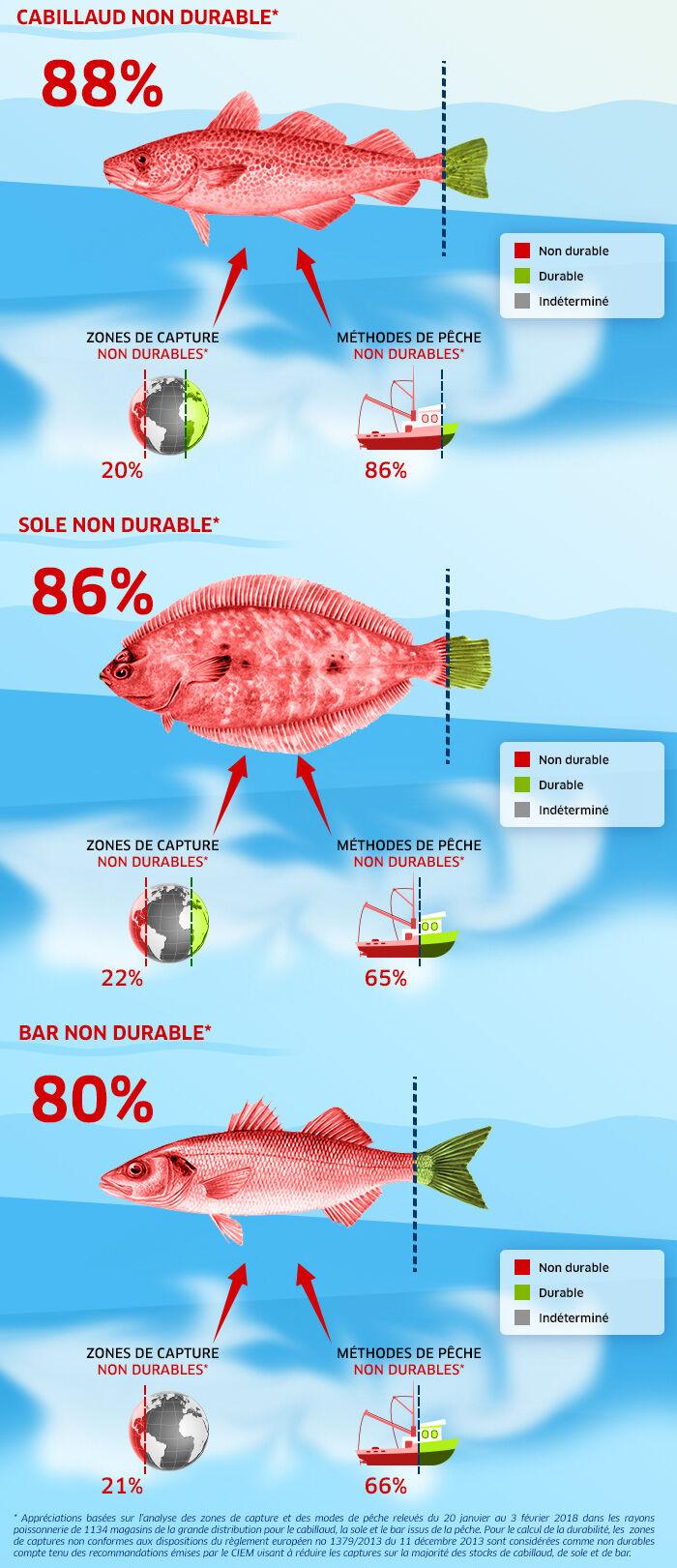 Infographie durabilité de la pêche 3 poissons