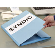Guide pratique sur les Contrats de syndicsFace à l'inaction des pouvoirs publics, un lot de conseils et un contrat-type au service des copropriétaires