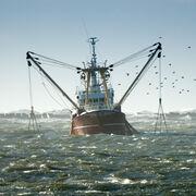 La pêche durable reste à quai !#OnVeutPlusDuChalut