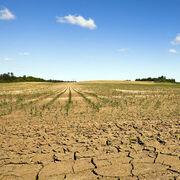 Plan sécheresseLes promesses évaporées du Gouvernement