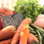 Sur-marges sur les fruits et légumes bio La grande distribution matraque toujours les consommateurs !