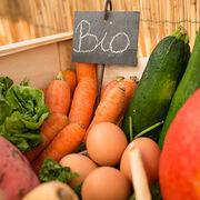 Alimentation bio - Moins de risque de cancer