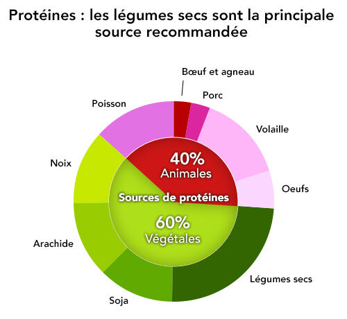 sources-proteines
