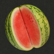 AlimentationPlus de gènes, mais moins de pépins