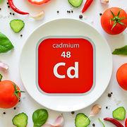 Cadmium dans les alimentsLa faute aux engrais