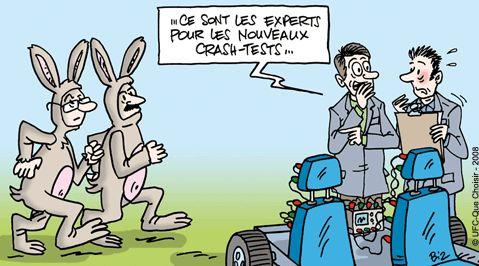 Appui tete voiture en cas de crash voitures - Coup du lapin accident de voiture ...