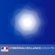 Cybermalveillance.gouv.frUne aide officielle contre les menaces informatiques