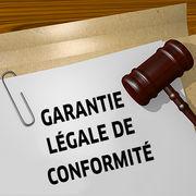 Garantie de conformitéL'action du consommateur limitée au vendeur