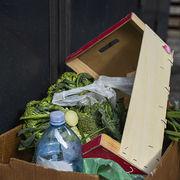 Gaspillage alimentaireReste à appliquer la loi