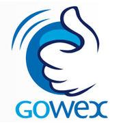 Investissement/placementL'étrange affaire Gowex