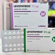 LevothyroxRetour temporaire de l'ancienne formule