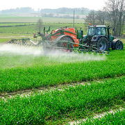 Loi Agriculture et alimentationBeaucoup trop peu de changements au final