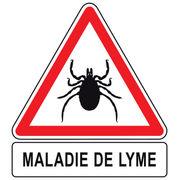 Maladie de Lyme - Des recommandations, enfin