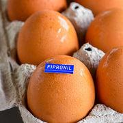 Œufs contaminésUne première liste des produits concernés publiée