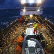 Pêche électriqueInterdiction définitive au 1er juillet