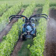 Pesticides et santéLa liste des maladies qu'ils provoquent s'allonge