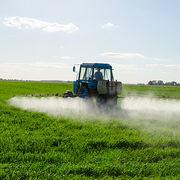 PesticidesL'Europe au secours des abeilles ?