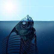 Réchauffement climatiqueDes conséquences de plus en plus visibles sur les océans