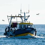 Ressources marinesLa pêche française doit encore s'améliorer