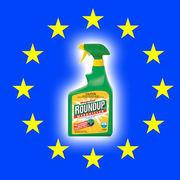 RoundupLe glyphosate en suspens