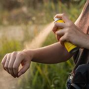 Tiques, moustiques - Bientôt de nouveaux répulsifs