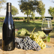 Vins des Côtes du RhôneUne entente sanctionnée