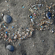 Microplastiques en merL'urgence sur terre !