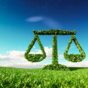 Projet de loi Climat/RésilienceDu sans filtre aux cent filtres