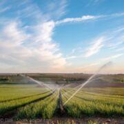 Varenne de l'eauDes bassines pour conforter une agriculture inadaptée