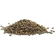 Lentilles bio et non bioLe bio plus propre et aussi riche en protéines