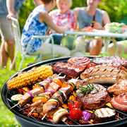 Test Tefal Easy Grill BG904812 Barbecues UFC Que Choisir