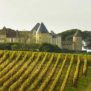 Vins crus bourgeois de Bordeaux