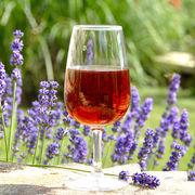 Vins rosés du Midi
