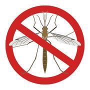 AntimoustiquesNos conseils pour vous défendre contre les moustiques