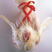 Bien-être animalMenu pour un Noël éthique