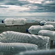 PollutionNos conseils pour lutter contre les microplastiques