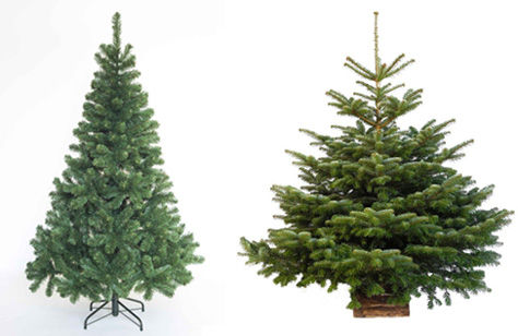 Sapin artificiel ou sapin naturel ?