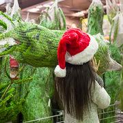 Sapin de NoëlQuel arbre vous branche?