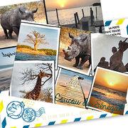 Applis de cartes postalesDes souvenirs de vacances dépoussiérés