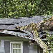 Assurance habitationLes garanties de base : catastrophe naturelle, tempête, grêle, neige