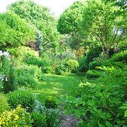 JardinageDes merveilles sans pesticides