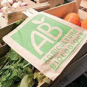Santé et nutritionL'intérêt sanitaire du bio de plus en plus tangible