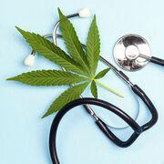 Traitement de la douleur - Le cannabis thérapeutique en expérimentation
