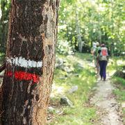 RandonnéeGrande randonnée : une marque qui vaut de l'or