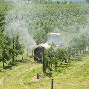 PesticidesLes pommiersà l'épreuve