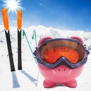 Sports d'hiverLe ski sans se ruiner