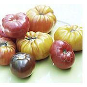 Tomates anciennesQuelle salade !