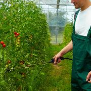 Traitements bioToxiques naturellement