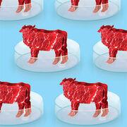 Viande in vitro - Adieu veau, vache, cochon…